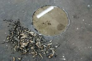 Opening in vloer (2018). Water, radiaal ventilator. Ø 64 cm.